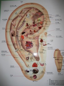 Auricular therapy chart